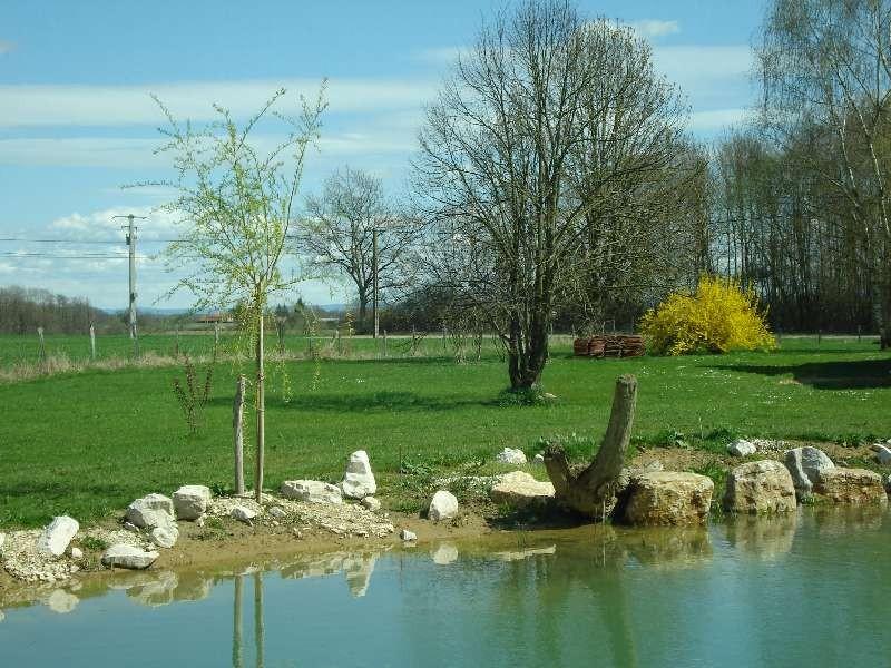 Viele Steine sind verlegt worden - rings um den Teich