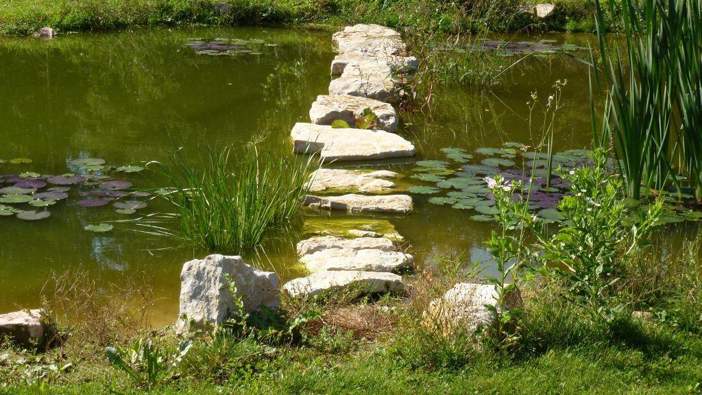 Der vordere Teich