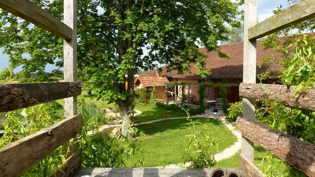 Blick vom Baumhaus auf die Terrasse