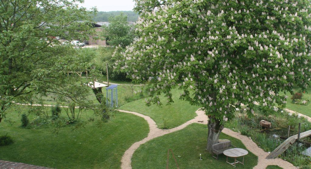 Die Kastanie steht Ende April in voller Blühte