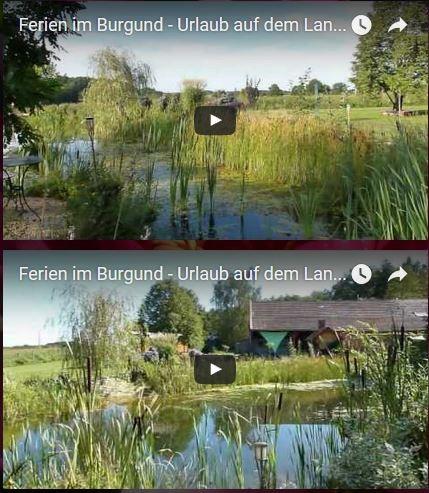 Video Bioschwimmteich