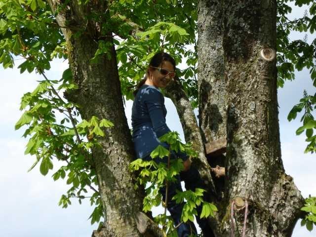 Nadine auf dem Baum