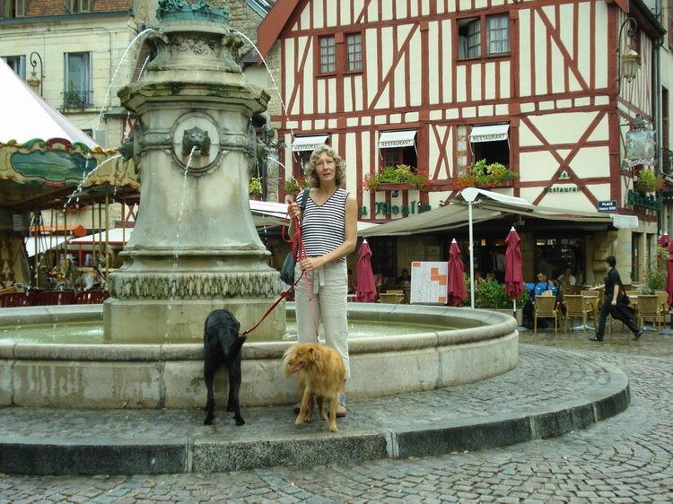 Wir machen einen Ausflug nach Dijon