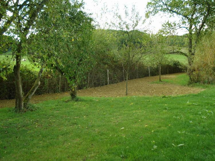 Der Nordwestliche Teil des Gartens ist endlich planiert und neu angesäht