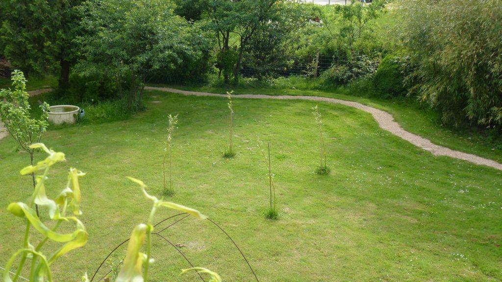 Der Weidenpavillon wurde vor ca. 1 Monat gepflanzt