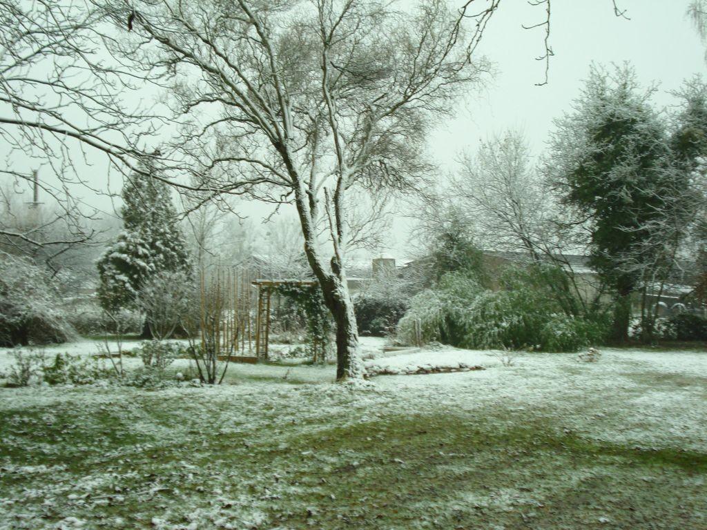 Ein bisschen Schnee im Garten