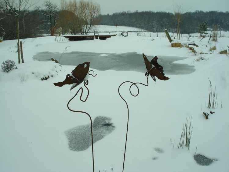 Der Teich ist zugefroren