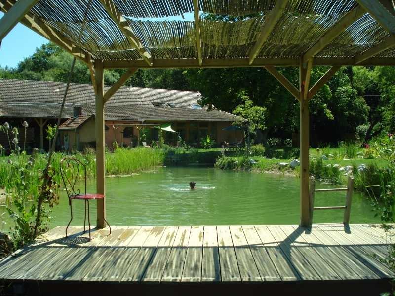 Désirée schwimmt und taucht liebend gerne im Teich