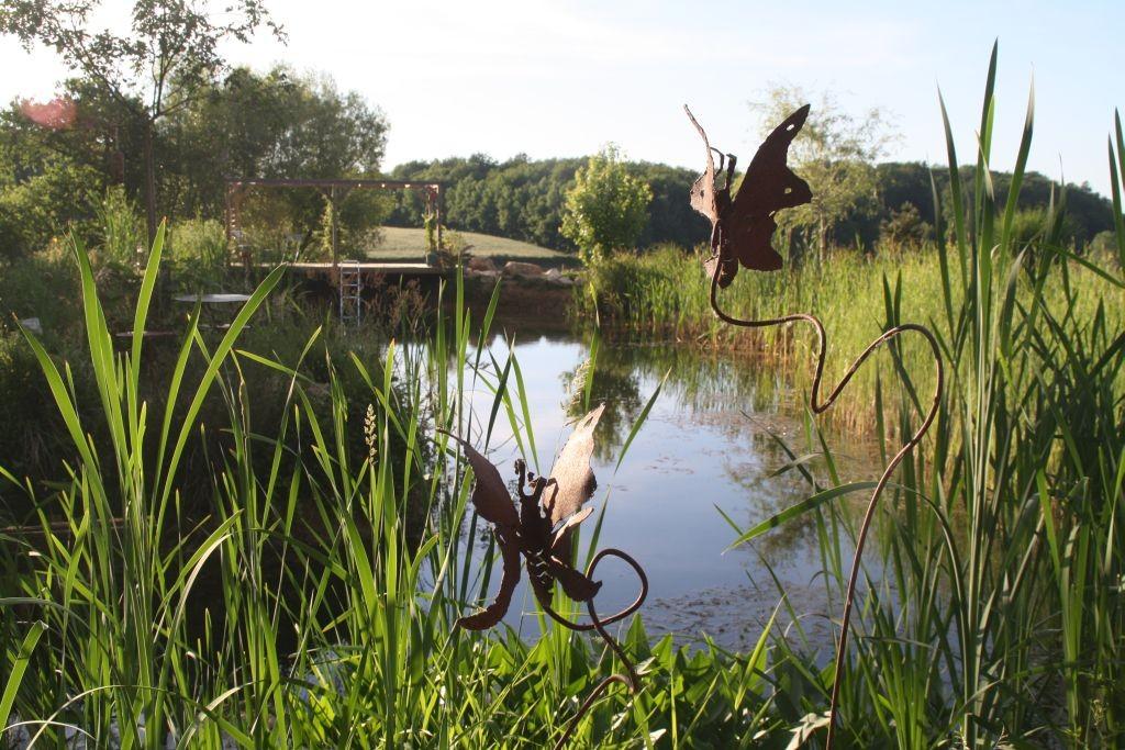 Stimmung am Teich