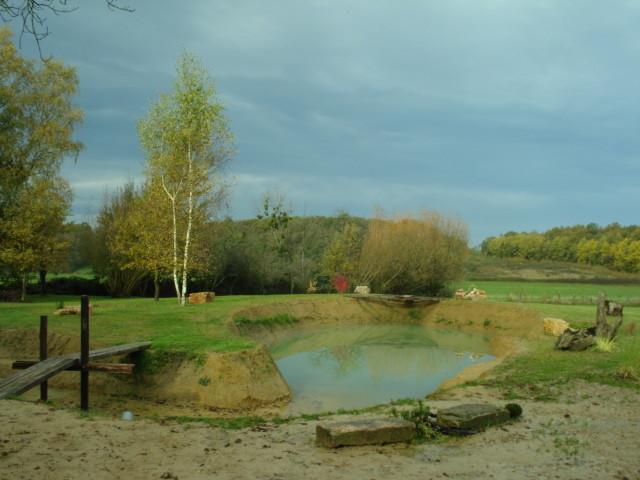 Die Brücke ist fertig - der Teich füllt sich langsam und es wird wieder alles grün