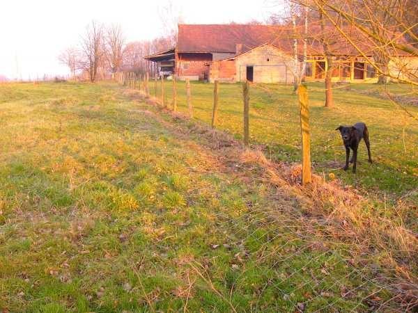 Der Zaun, der mein Land in zwei Hälften trennt muss weg