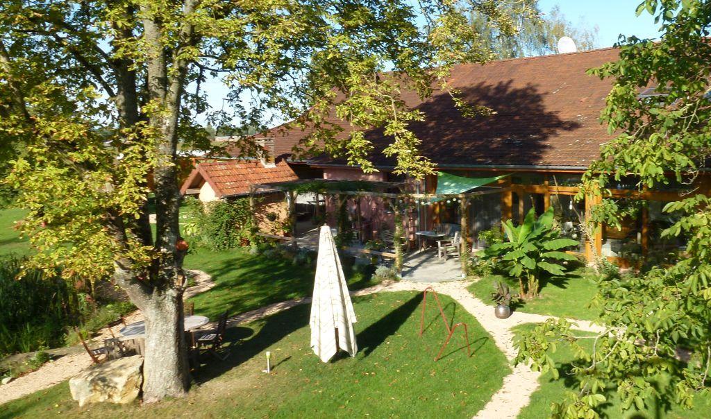 Blick vom Baumhaus