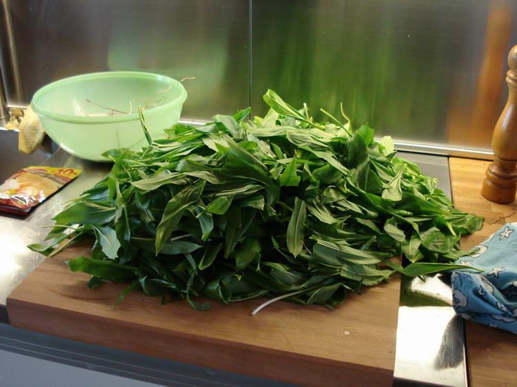 Jede Menge Bärlauch gesammelt, daraus entsteht dann das leckere Pesto