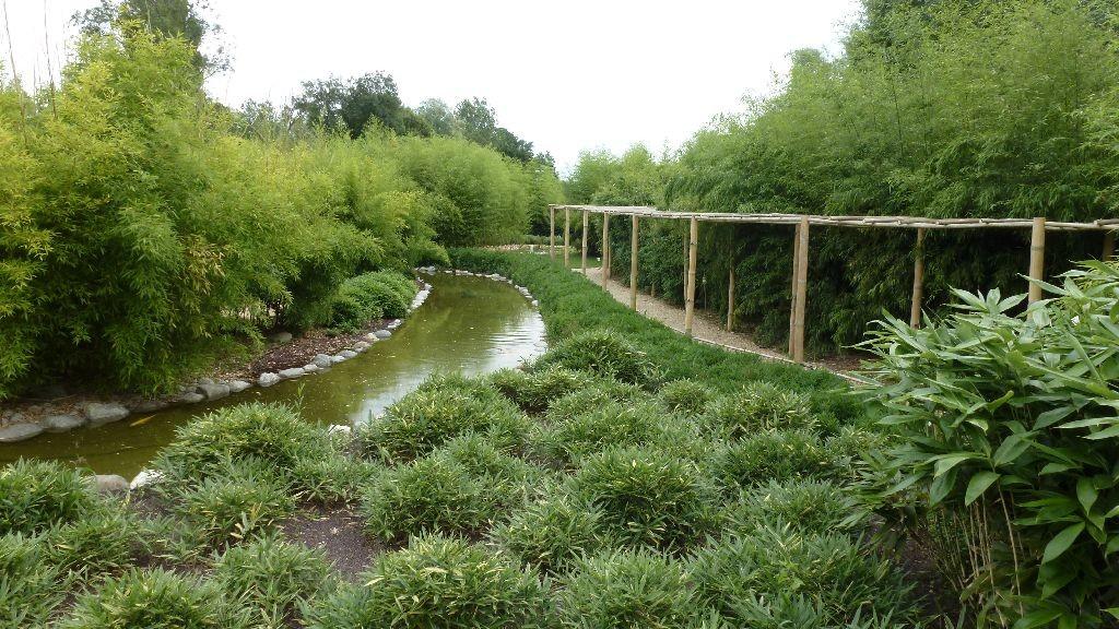 Coole Bambusbauten im Aquapark