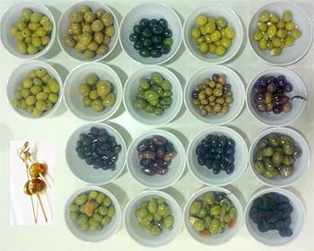 Calibre y tamaños de las aceitunas