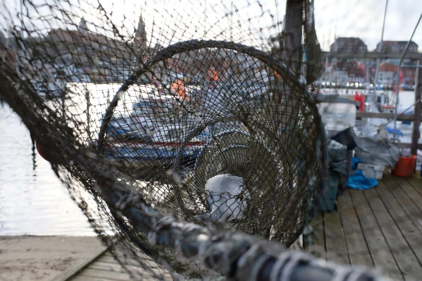 Fischereihafen FL © Mareen Reichardt