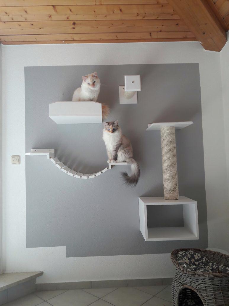 katzenbaum f r gro e katzen kratzbaum f r die wand tolle katzen kletterwand. Black Bedroom Furniture Sets. Home Design Ideas