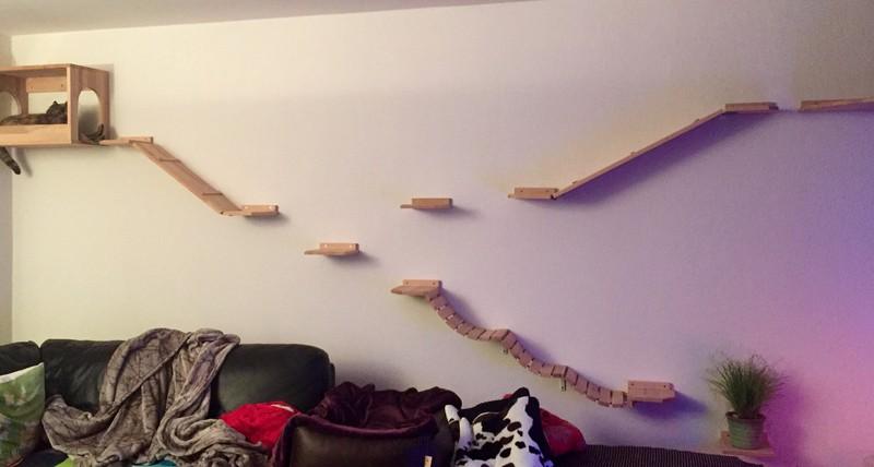 Kletterwand Katze