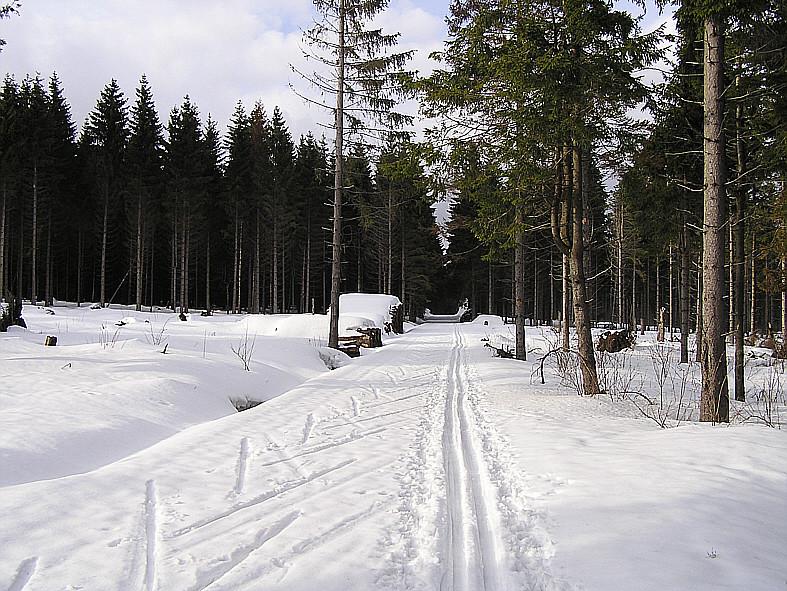 Loipe Rotes Moor - Schwedenschanze März 2009