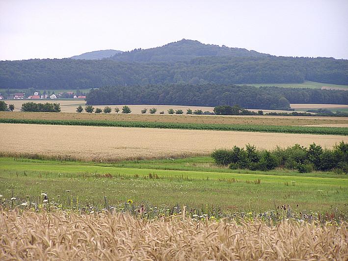 Zwischen Steinbach und Stoppelsberg