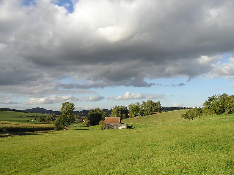 Im Feld hinter dem Hünhaner Weiher