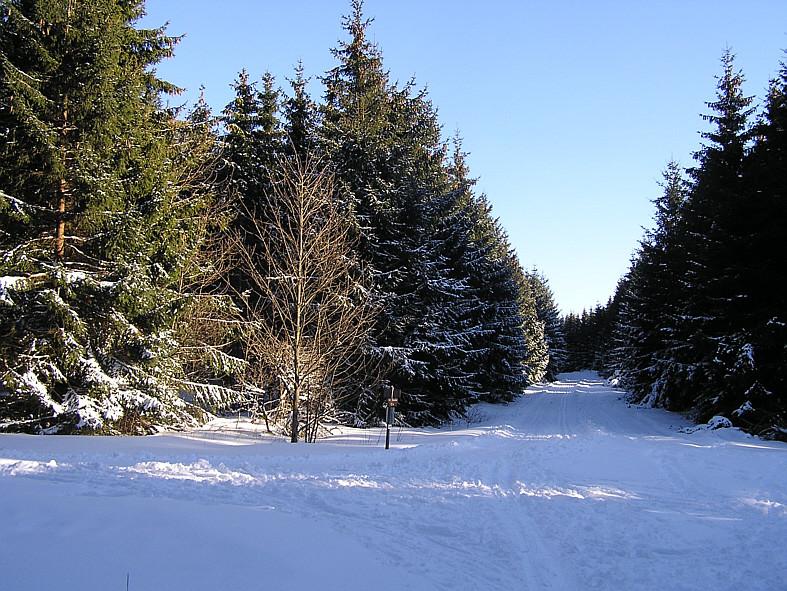 Rhönwaldloipe 7. März 2010