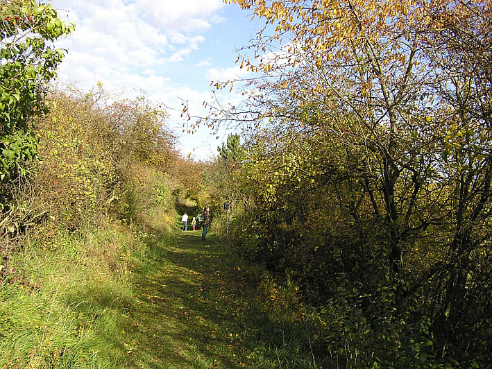 Am Naturlehrpfad in Eiterfeld