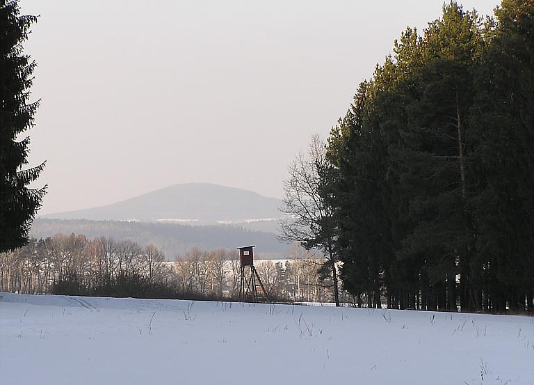 Im Rudolphshaner Wald, Blick zum Stoppelsberg