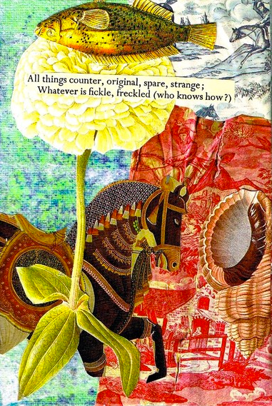 Found Poetry Collage by Shelley Klammer