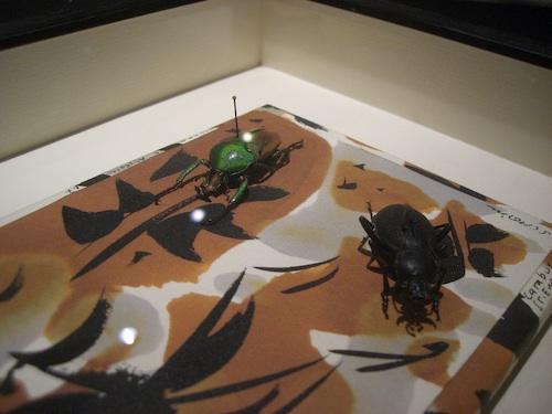 Distanzrahmen Objekt-Rahmen für Insekten