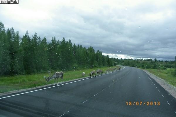 bei Kuusamo