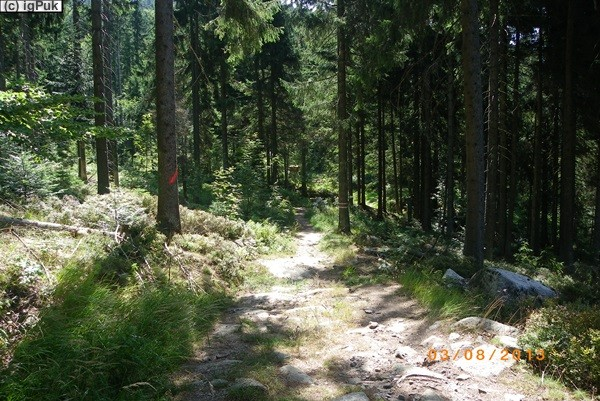 Stifter-Wanderweg Oberschwarzenbach