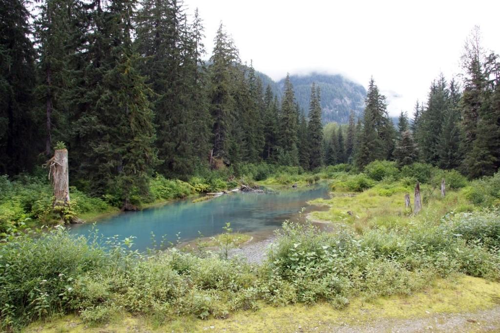 Unberührte Natur, Hyder, Alaska