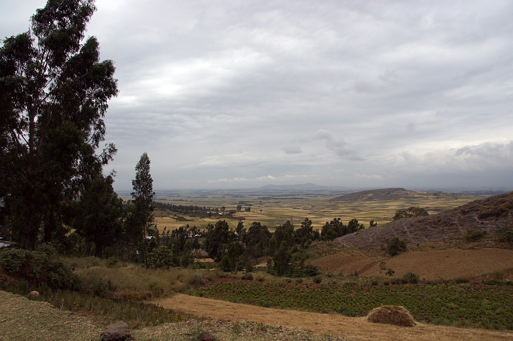 Blick in das Rift Valley, den ostafrikanischen Grabenbruch