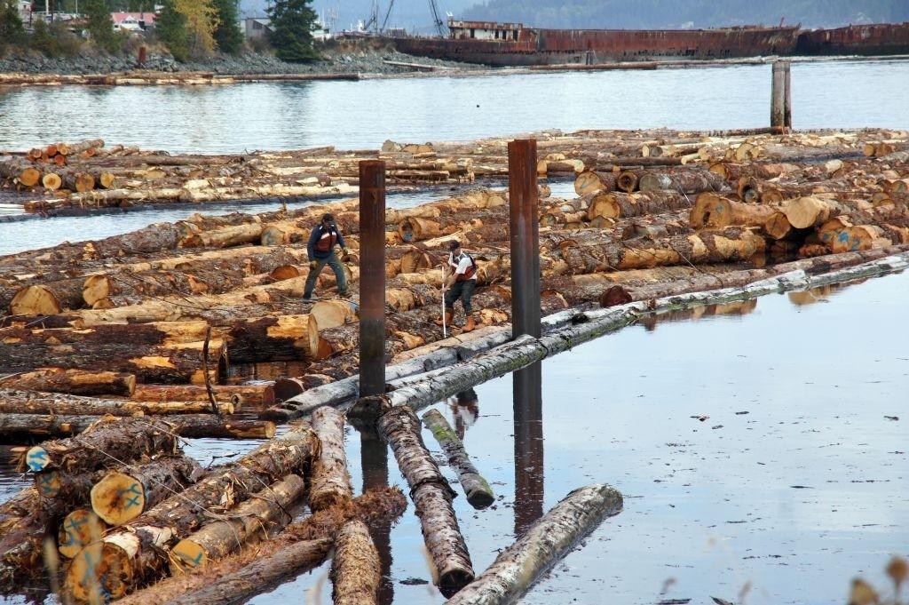 Holzschwemme, Vancouver Island