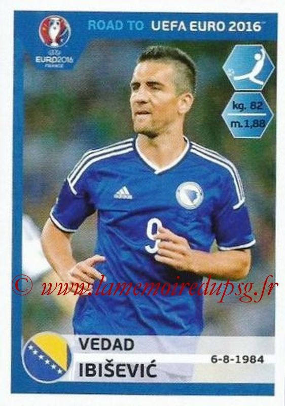 N° 031 - Vedad IBISEVIC (2004-Janv 05, PSG > 2015, Bosnie Herzegovine)