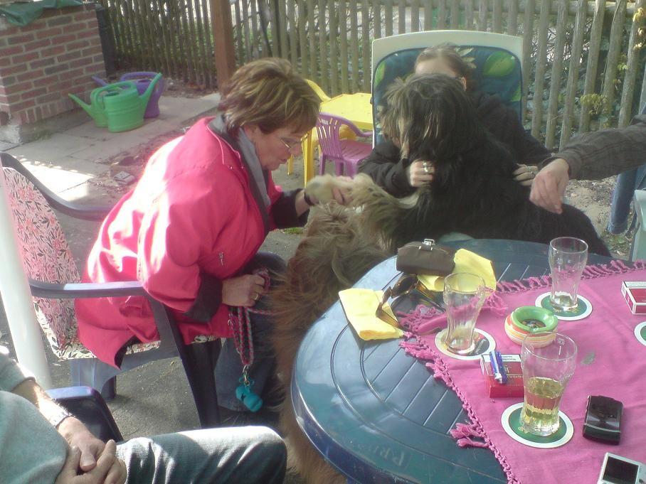 Hannelore kuschelt mit Wuschel und Buddy