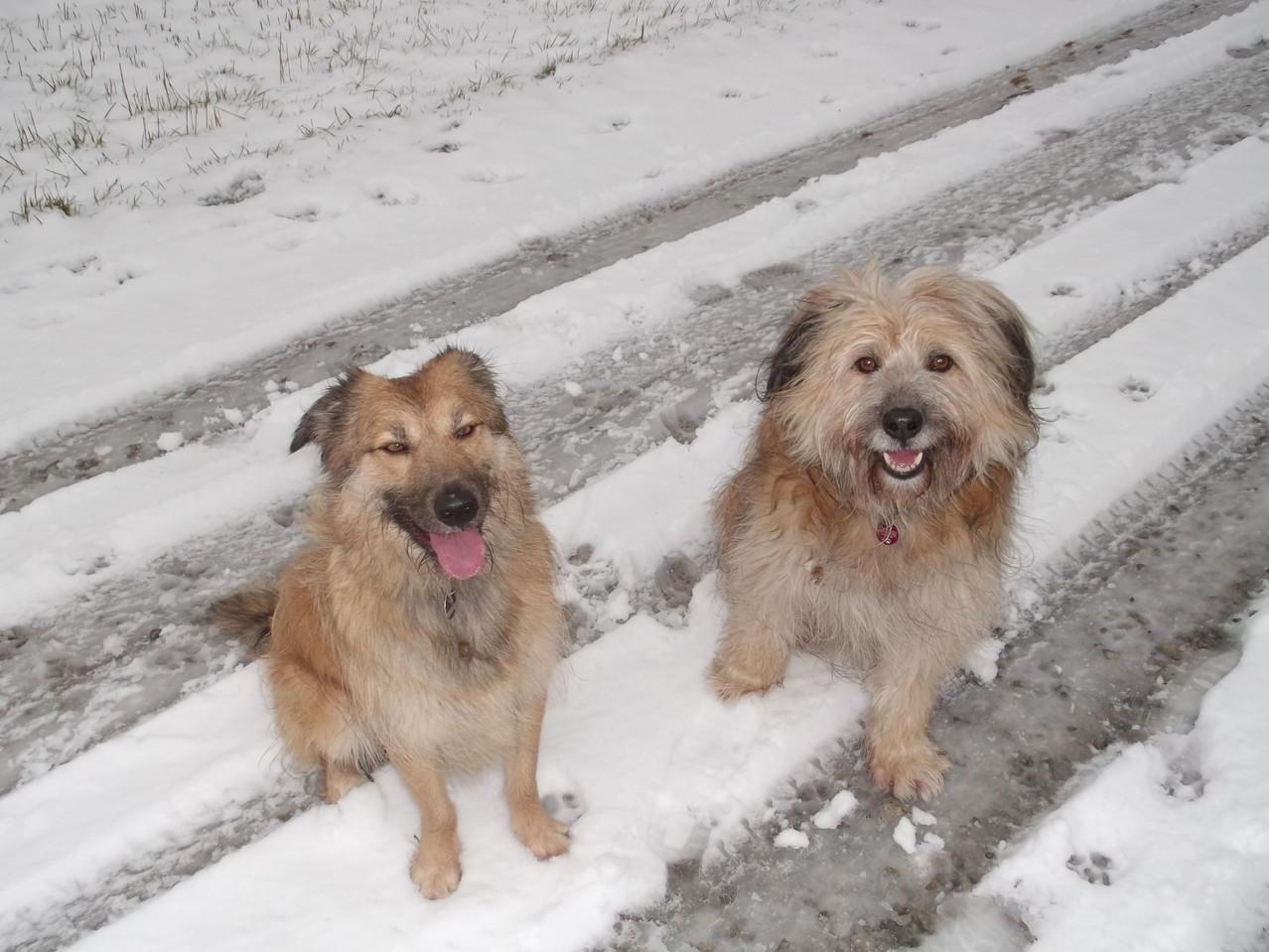 Pheeby und Leo