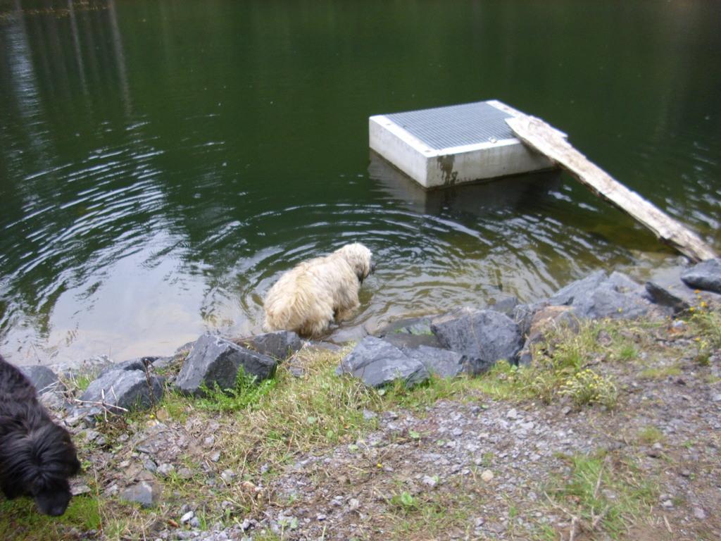 ... vielleicht auch eine kleine Badepause?