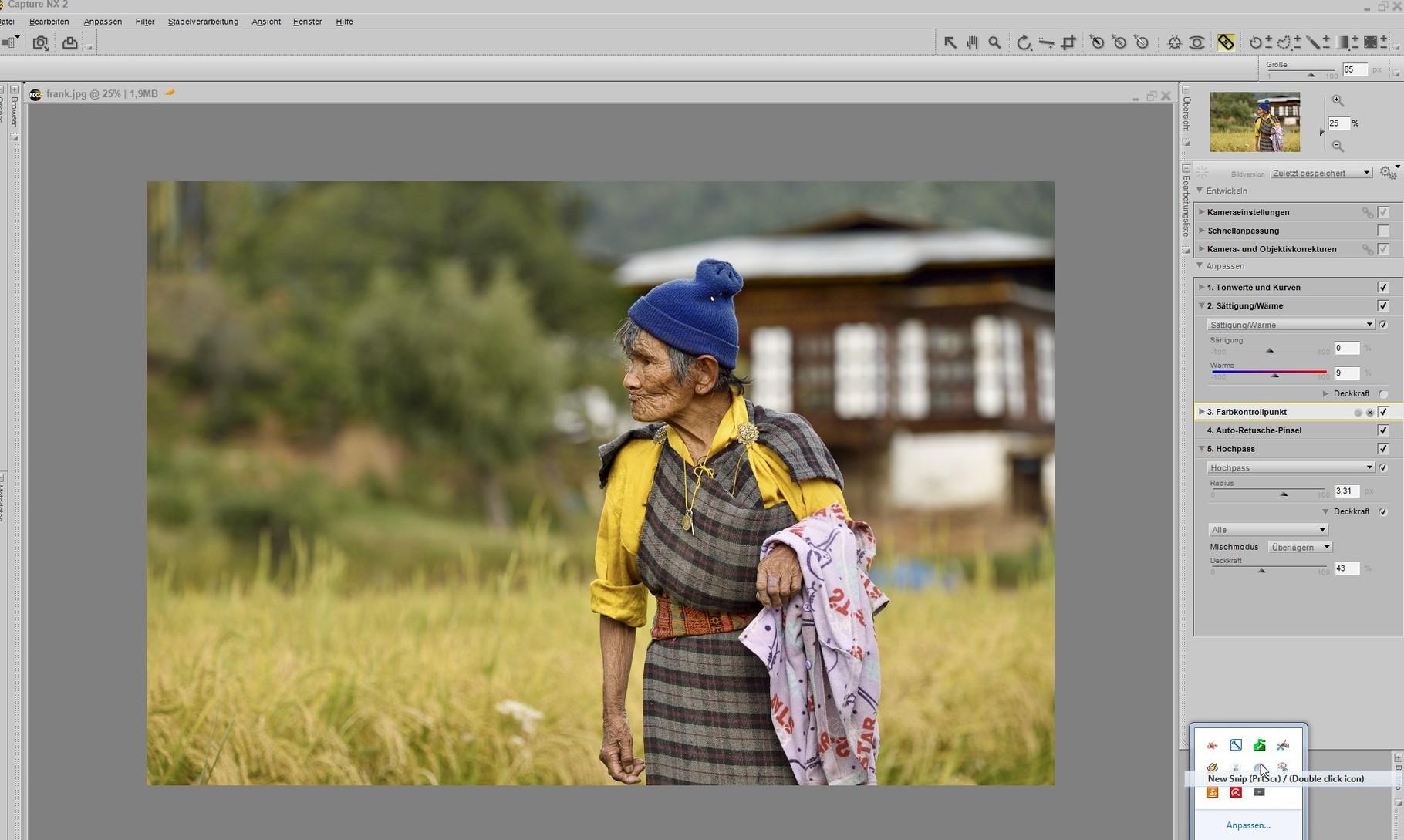 meine Bearbeitung Screenshot Capture NX
