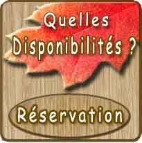 reservation de la bulle romantique en Baie de Somme