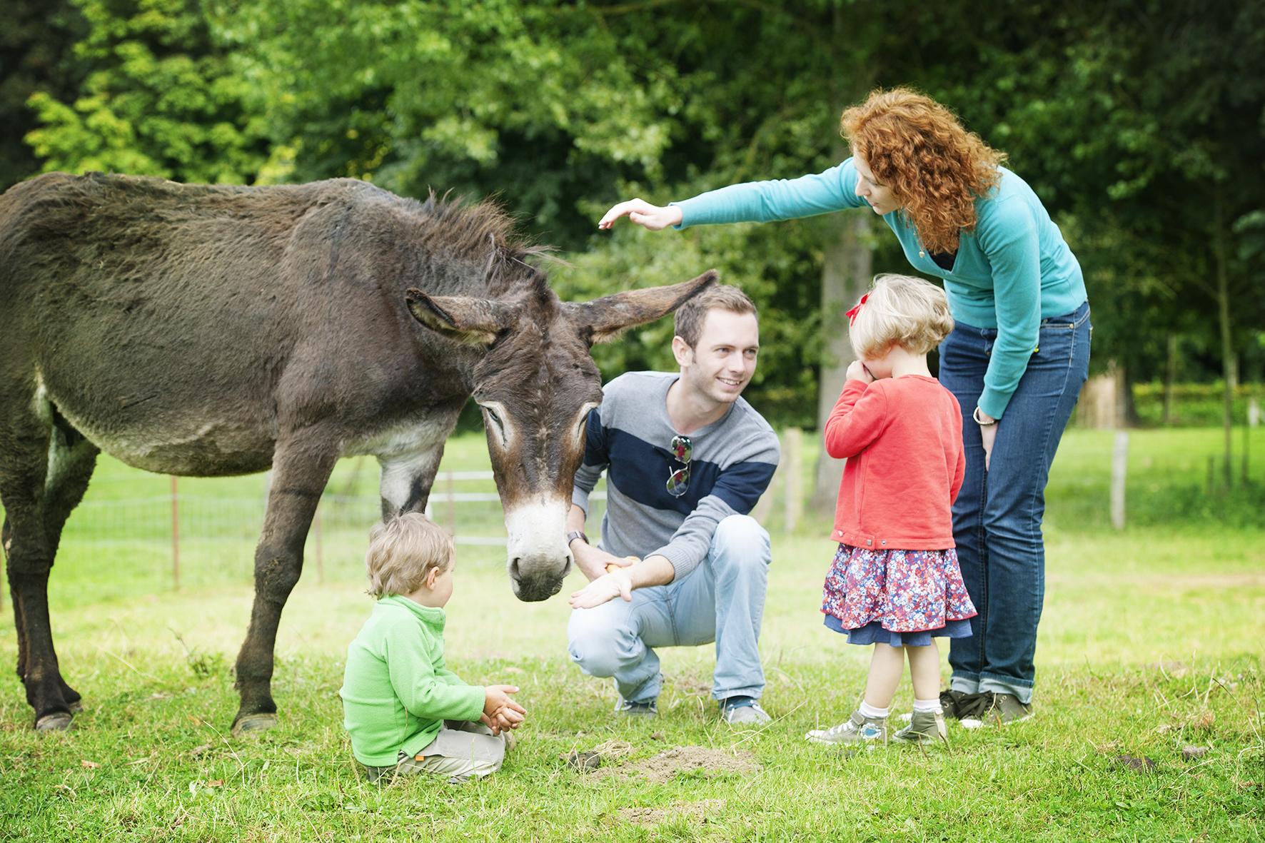 Profiter les vacances en famille avec les animaux en Baie de Somme
