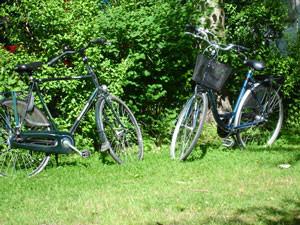 Ballade en vélo LE Hourdel et ma cabane dans les arbres