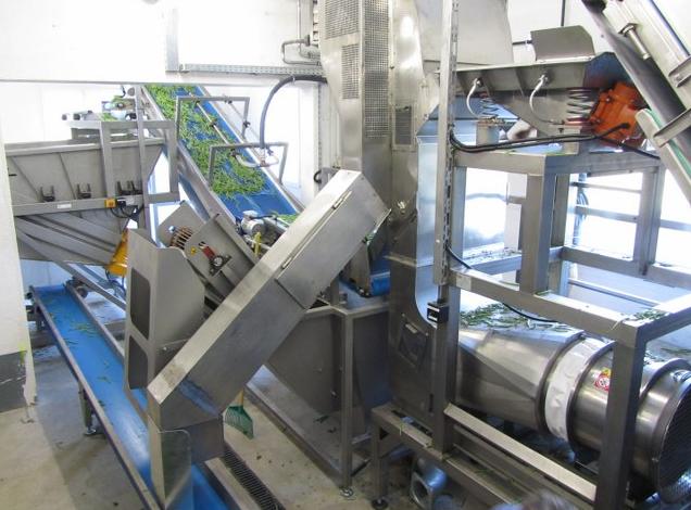 Pnömatik separatör yabancı maddeleri fasulyeden ayırmak için