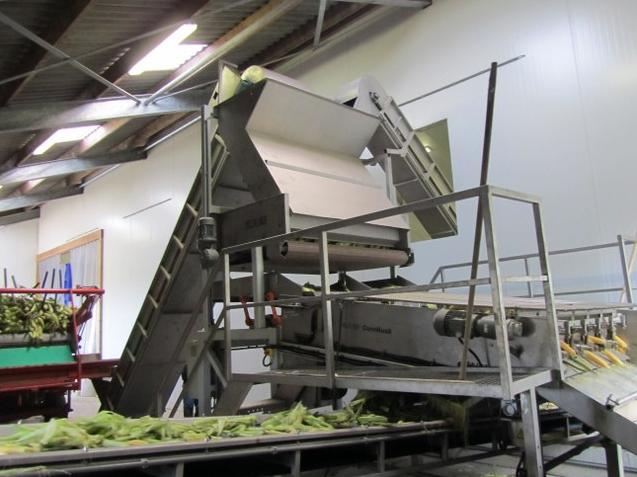 Mısır kabuk soyma makinesi