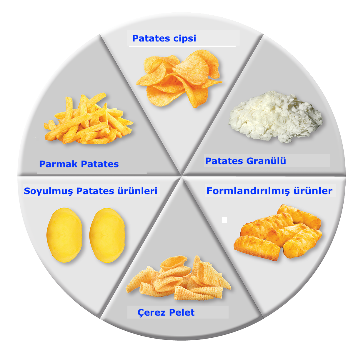 Patates Proses makineleri