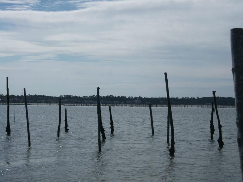 poteaux signalant les parcs à huitre en marée haute sur le bassin d'Arcachon