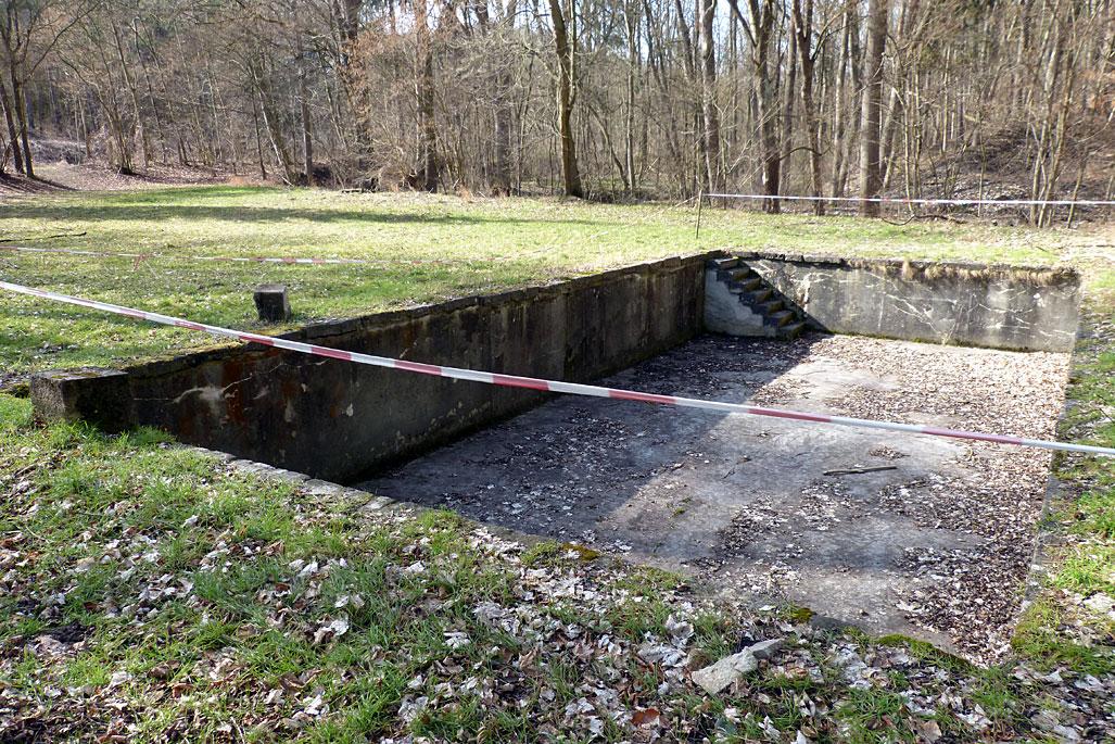 Diesen Bereich wollen wir der Natur zurückgeben. Der alte Betonpool soll weg und dafür hier ein Feuchtbiotop für Ringelnattern und Co. entstehen. © NAJU Thüringen