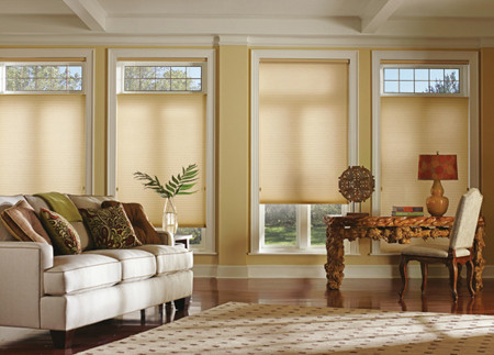 Duettes by Hunter Douglas showing the top down, bottom up feature.