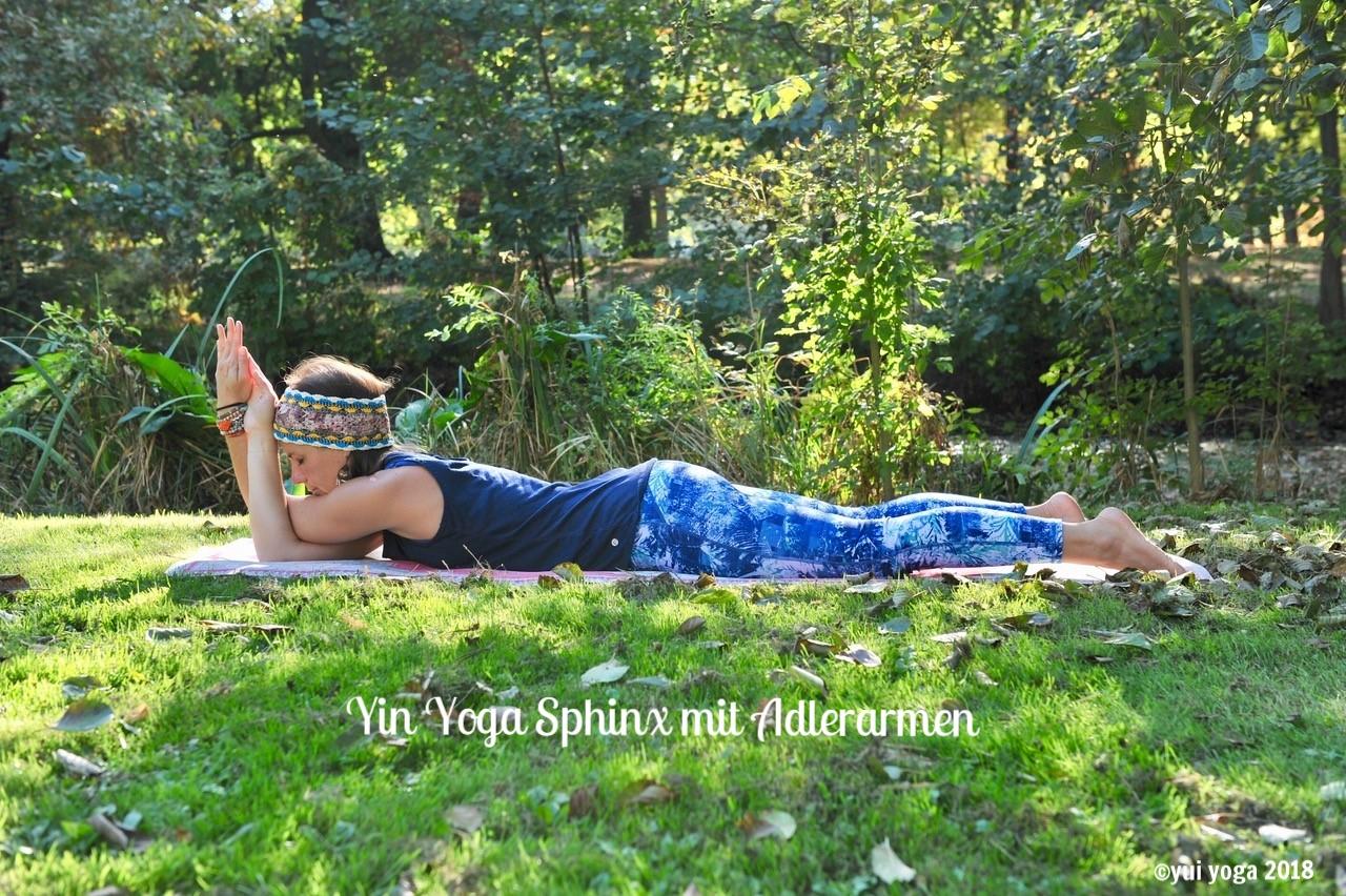 Yin Yoga Position: Sphinx mit Adlerarmen
